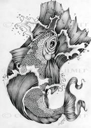 Koi In Graphite