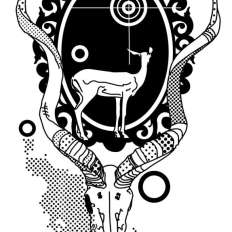 Kudu-skull--illusration