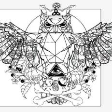 occult owl with wings spread